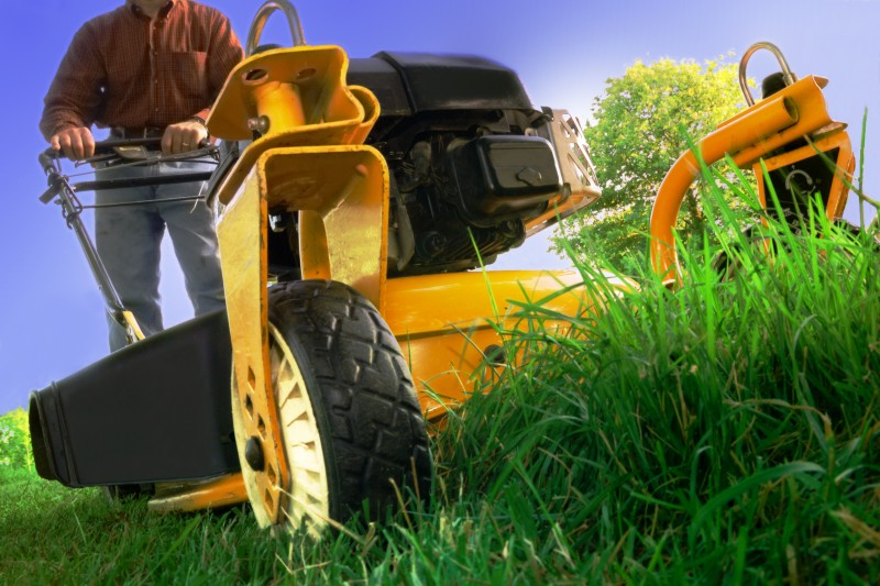 Garden Maintenance On Your Lawn With Proper Raking